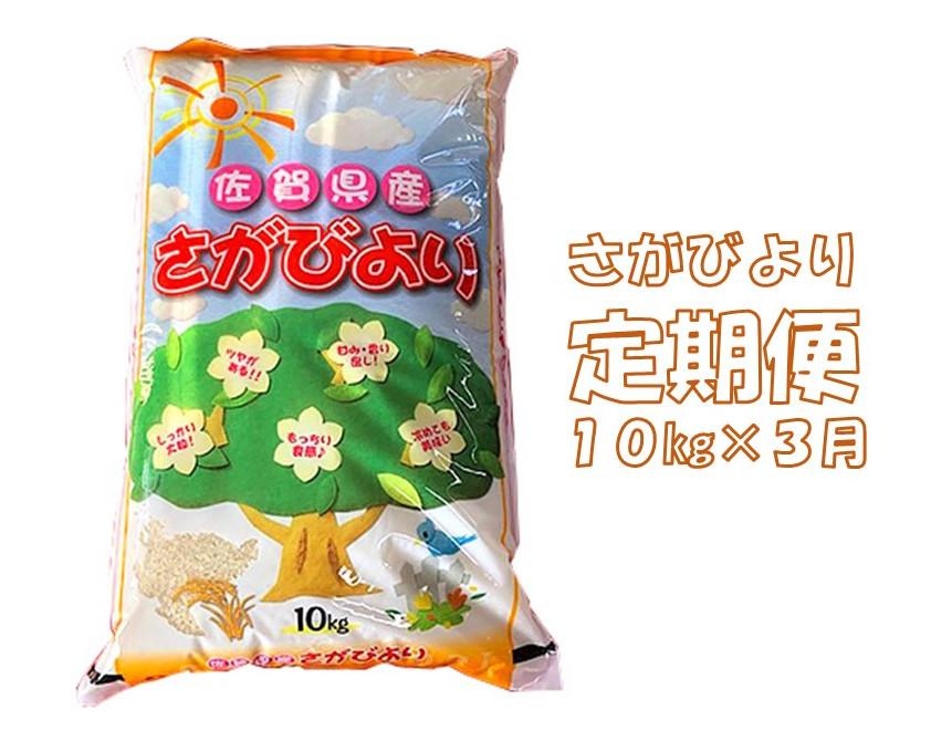 【ふるさと納税】E-049R 3カ月定期便さがびより 10kg(計30kg)