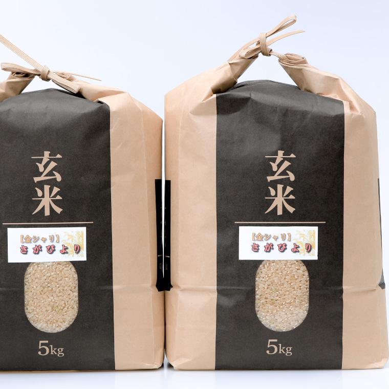 【ふるさと納税】令和元年産「さがびより(玄米)」 10kg×12回定期便