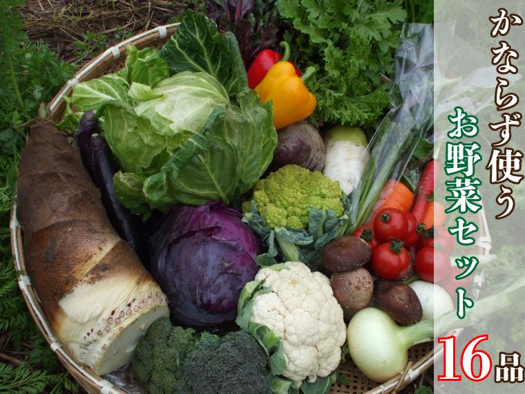 【ふるさと納税】必ず使うお野菜セット(16品)(BG154)