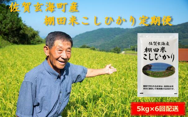 【ふるさと納税】棚田米こしひかり定期便(5kg×6ヶ月)