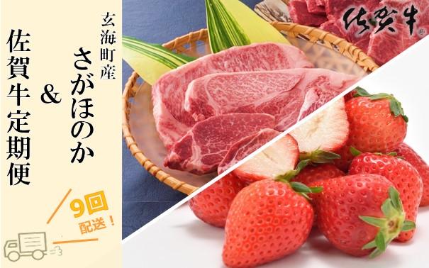 【ふるさと納税】玄海町産さがほのか&佐賀牛定期便【9回】