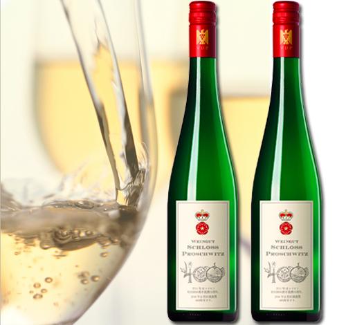 S20-2【ふるさと納税】 有田焼創業400年記念ワイン 2本セット (ミュラー トゥルガウ)(白ワイン)