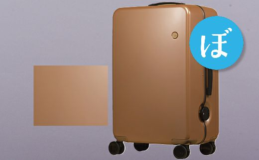 【ふるさと納税】スーツケース中型GINKGO(カッパープレーン)