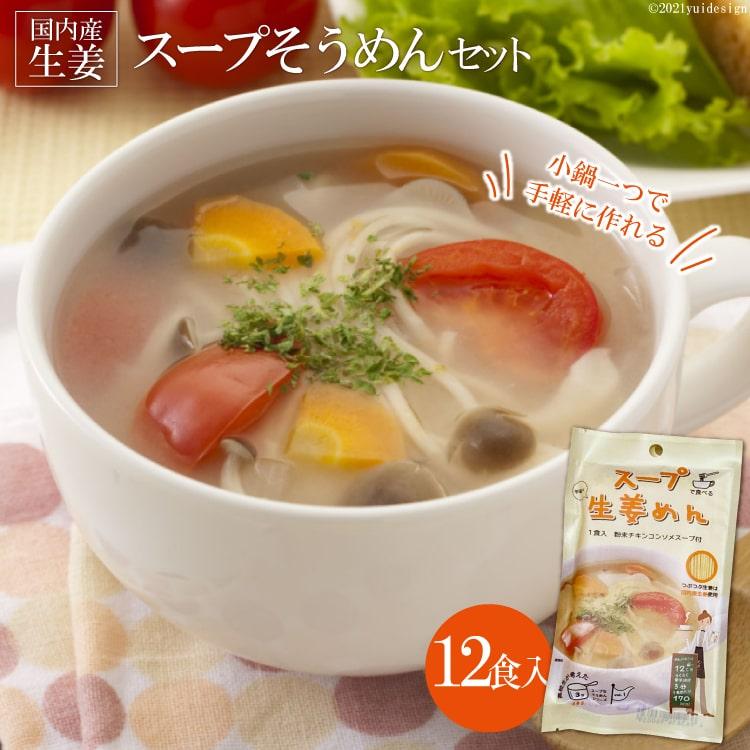 【ふるさと納税】伝統の味が若者のアイデアで進化 スープそうめんセット(生姜)12食
