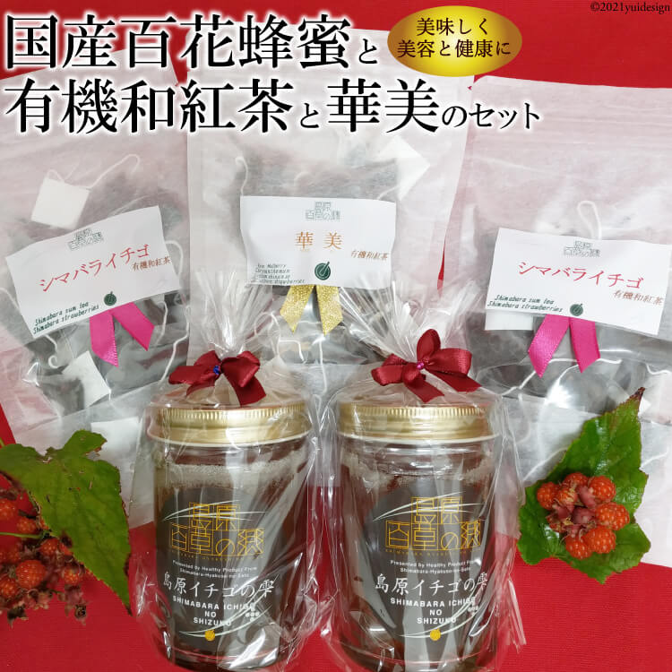 【ふるさと納税】「紅茶と蜂蜜の島原イチゴセット60」