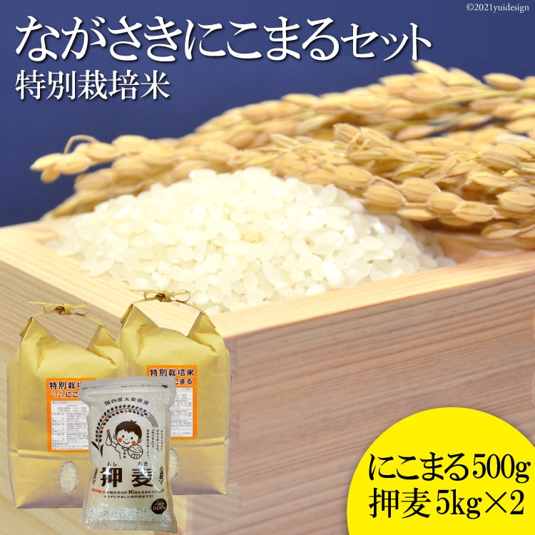 【ふるさと納税】特別栽培米ながさきにこまる・押麦セット