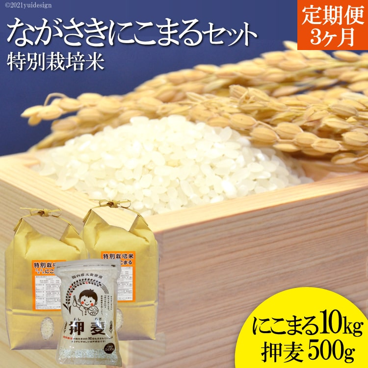 【ふるさと納税】【定期便・3ヵ月】≪特別栽培米≫ 豊かな水が育んだ ながさきにこまる・押し麦セット(精米10kg +押麦500g)