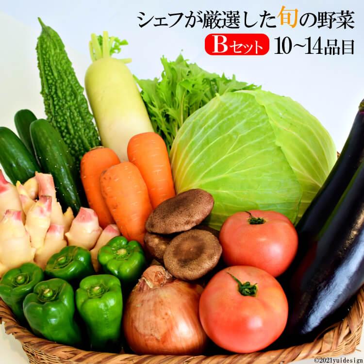【ふるさと納税】シェフが厳選した旬の野菜~ペニンシュラ・ベジタブル(島べジ)~Bセット