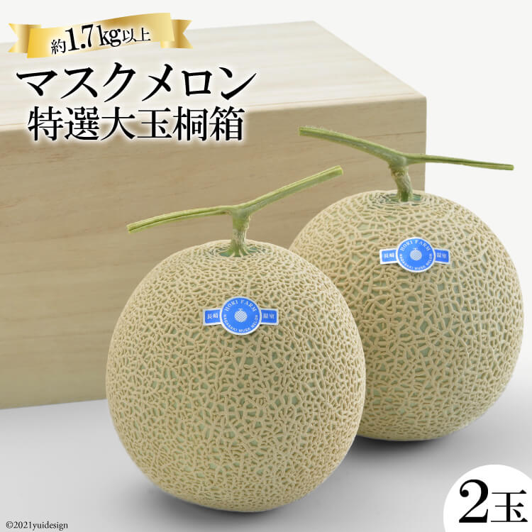 【ふるさと納税】マスクメロン特選大玉桐箱