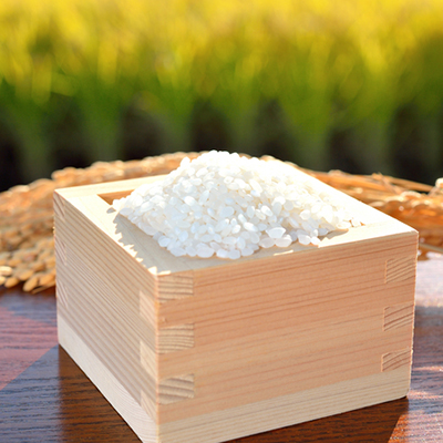 【ふるさと納税】【B4-020】平成30年産米 お弁当屋さんが太鼓判!棚田浮立の里のお米 9.5kg