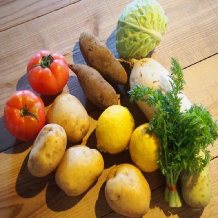 【ふるさと納税】0308 朝採れ季節の野菜セット