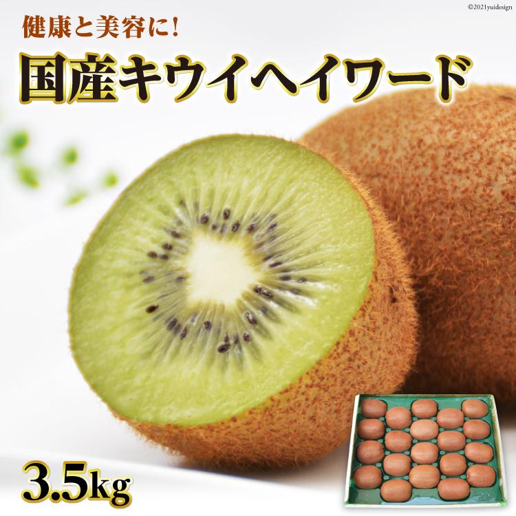 国産キウイフルーツ キウイ ヘイワード 3.5kg