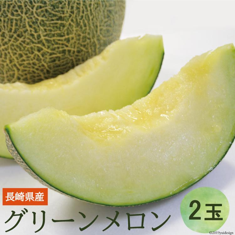 【ふるさと納税】雲仙グリーンメロン 大玉(2玉入り)