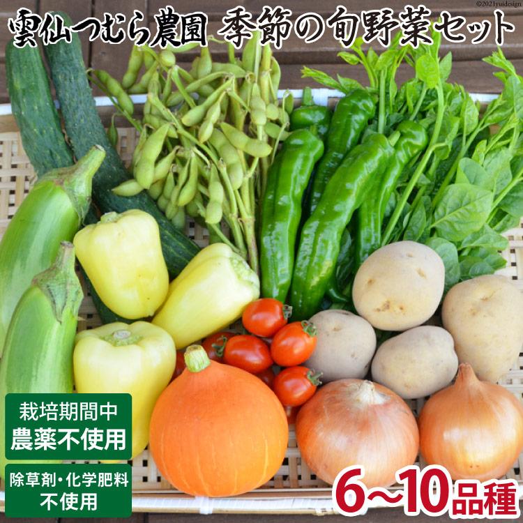 【自然の力で育てる】季節の旬野菜セット<雲仙つむら農園>