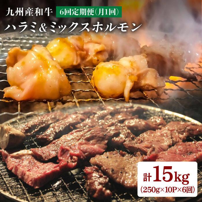 焼肉屋定番ハラミと和牛ホルモン5種 日本全国 送料無料 食べないとモッたいない ふるさと納税 人気の製品 月1回10P×6回定期便 九州産和牛ハラミ 計15kg EAX011 岩永ホルモン ミックスホルモン