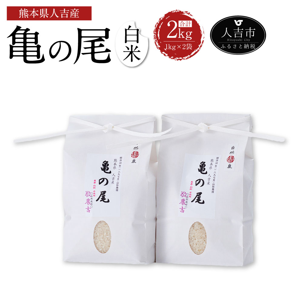【ふるさと納税】人吉産 亀の尾(白米) 1kg×2袋 合計2kg 米 精米 国産 九州産 熊本県産 令和元年度産 送料無料