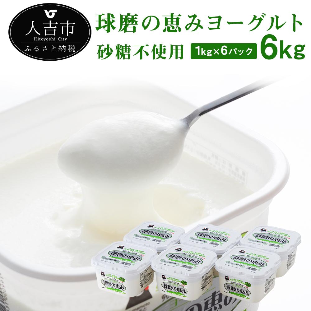 【ふるさと納税】球磨の恵み ヨーグルト 砂糖不使用 1kg 6パック 合計6kg 人吉球磨産 乳製品 大容量 送料無料