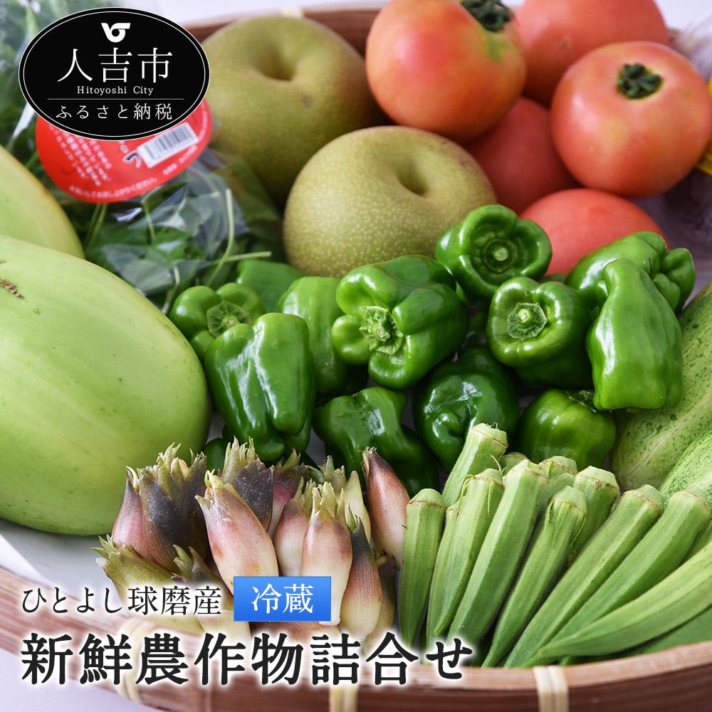 【ふるさと納税】ひとよし球磨産 新鮮農作物詰合せ 7~12品 野菜 きのこ 詰め合わせ セット 熊本県産 九州産 野菜 冷蔵 送料無料