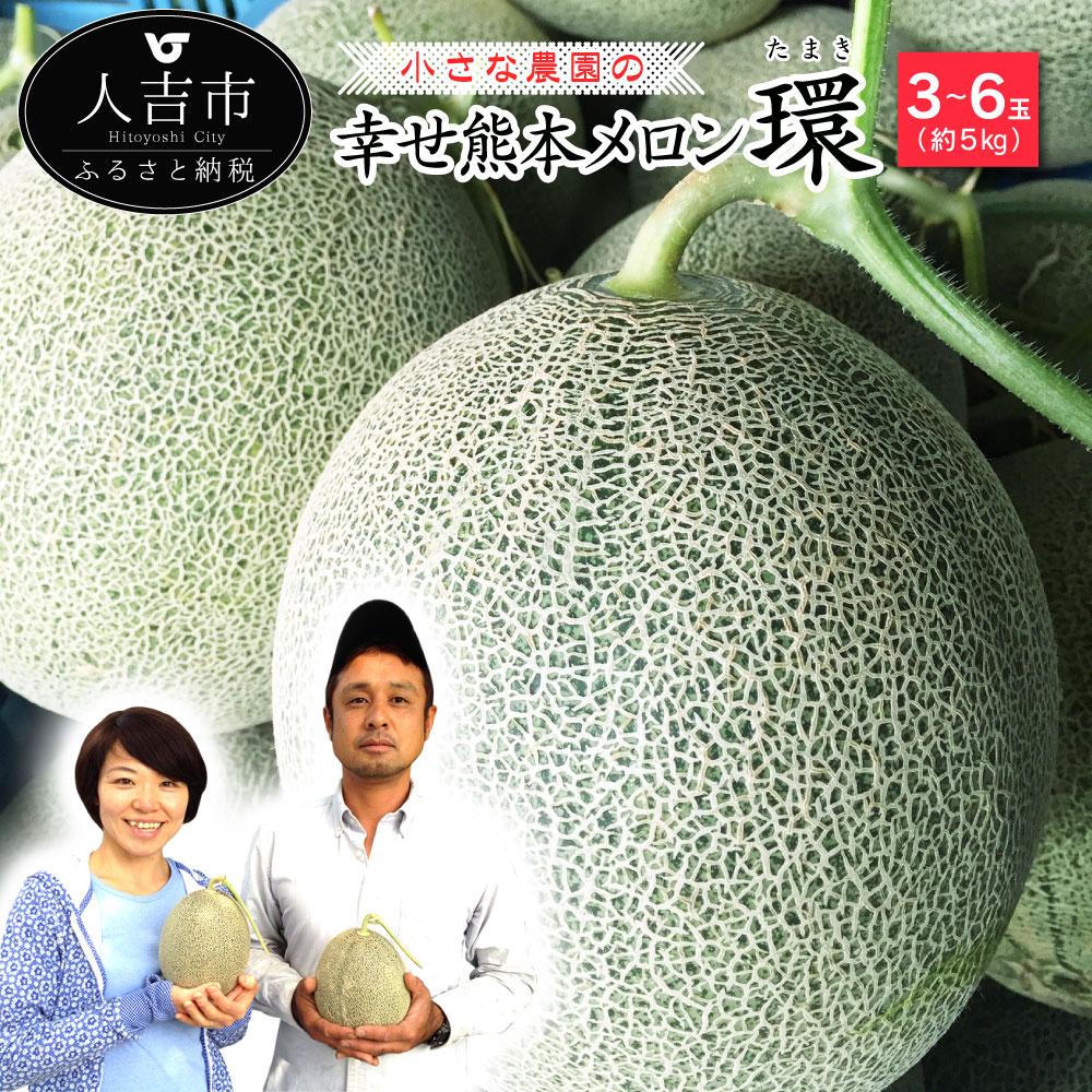 【ふるさと納税】小さな農園の幸せ熊本メロン『環』 たまき 3~6玉(約5kg) メロン フルーツ 果物 熊本県産 九州産 送料無料【2020年5月下旬~6月上旬発送予定】