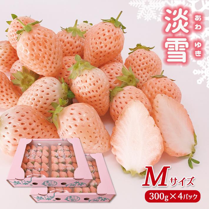 【ふるさと納税】 <2月以降発送>熊本玉名 白いちご「淡雪」(Mサイズ1200g)<2月~4月で発送>