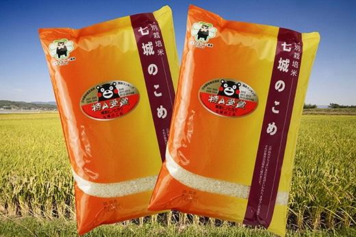 【ふるさと納税】七城のこめ 精米 5kg×2袋