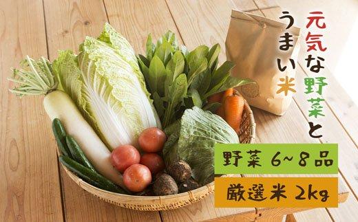 【ふるさと納税】A-96 元気野菜&米セット