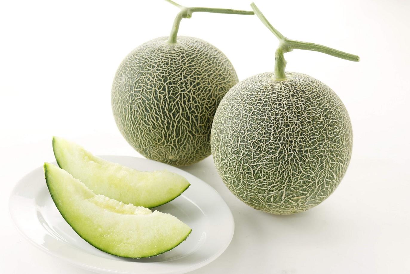 【ふるさと納税】肥後グリーンメロン2玉 【メロンドーム】