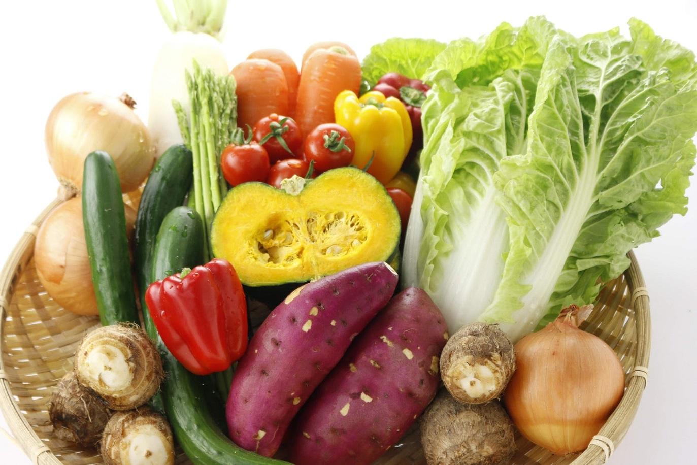 【ふるさと納税】旬の野菜便(定期便) 野菜10~12品×3回発送 【養生市場】