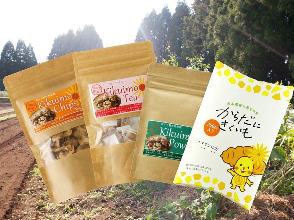 【ふるさと納税】菊芋加工品4種セット からだにきくいも