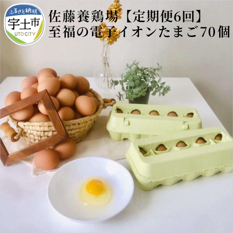 日本限定 毎月1回 6か月連続で届く ☆送料無料☆ 当日発送可能 佐藤養鶏場のニワトリ もみじ の卵は美しい褐色で形もよく 卵の黄身はつまんで持ち上げることもできます 熊本県宇土市 至福の電子イオンたまご70個 朝採れの新鮮な卵をご自宅にお届けいたします 佐藤養鶏場 ふるさと納税 定期便6回