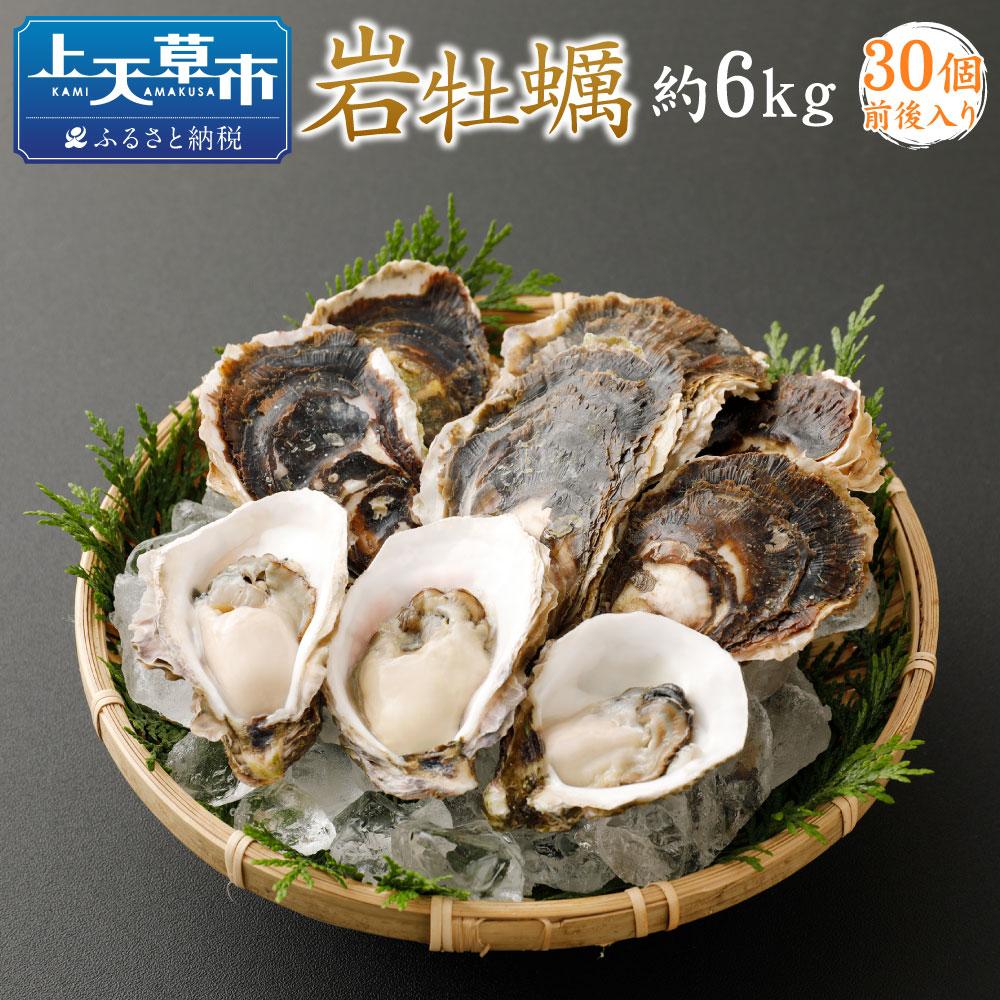 【ふるさと納税】岩牡蠣セット 1個あたり約200g 30個前後 計約6kg 加熱用 かき カキ 牡蠣 殻付き 国産 九州産 炭火焼 不知火海 詰め合わせ 冷蔵 送料無料