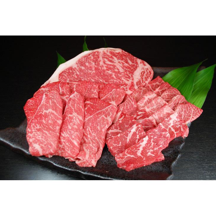 【ふるさと納税】 熊本県産 黒毛和牛サーロインステーキ200g 焼肉用300gすき焼き用300gセット