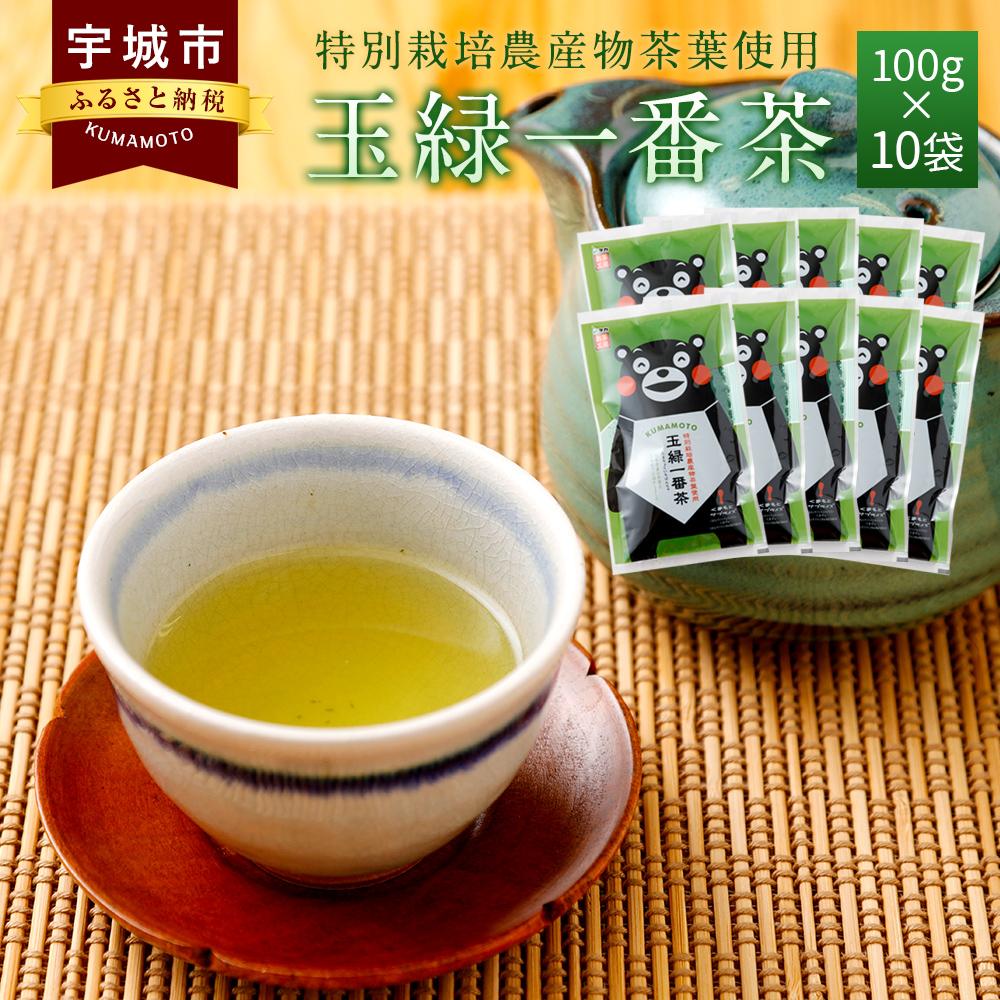 【ふるさと納税】くまモン 玉緑一番茶 100g 10袋セット 緑茶 日本茶 一番茶 農薬を使わず栽培した茶葉 送料無料