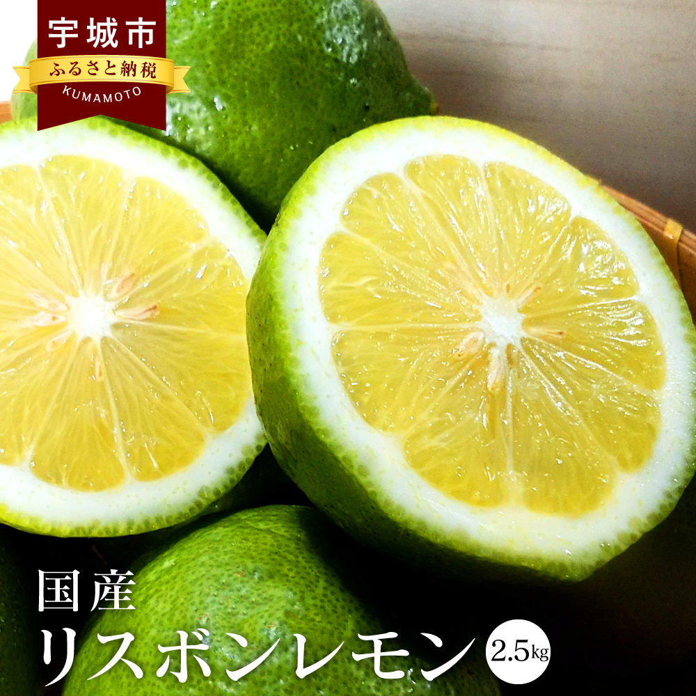 【ふるさと納税】 国産 リスボンレモン 2.5kg 九州産 熊本県産 レモン フルーツ 果物 ビタミン 柑橘 送料無料