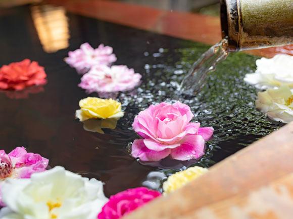 【ふるさと納税】ASO ROSE BATH GIFT(アソ ローズ バス ギフト)