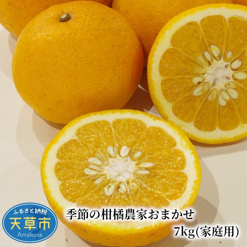 【ふるさと納税】季節の柑橘農家おまかせ 7kg(家庭用)