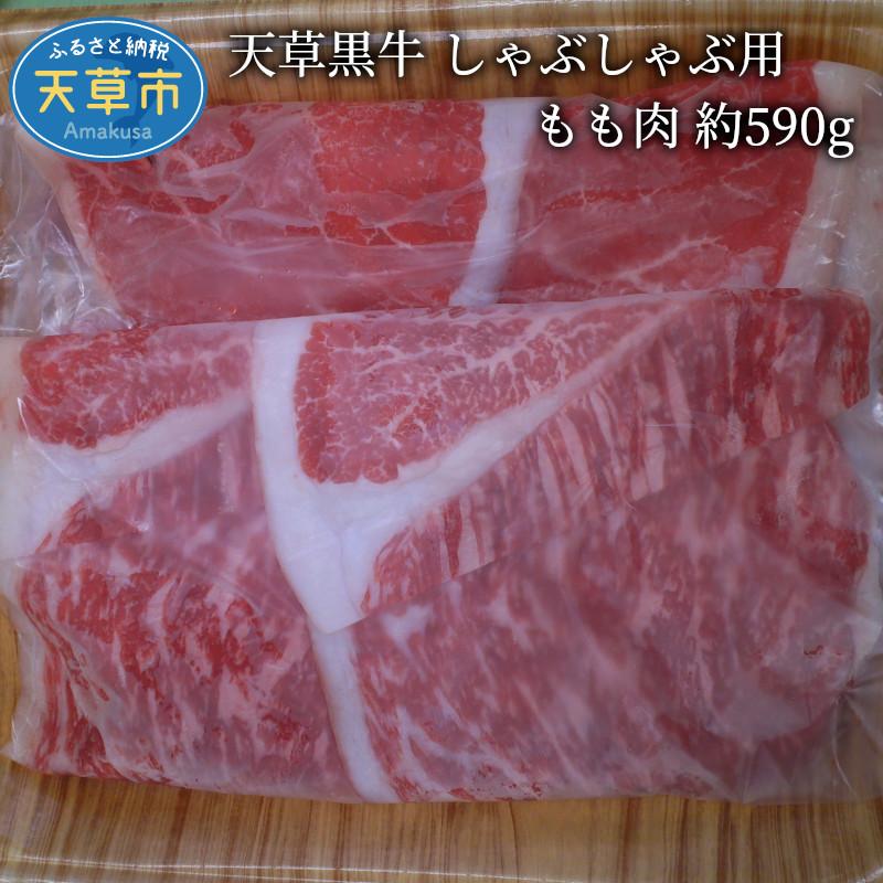 特別セール品 天草黒牛の風味豊かでやわらかいもも肉を約590gご用意しました ふるさと納税 天草黒牛 もも肉 約590g しゃぶしゃぶ用 トレンド