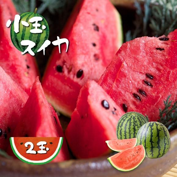 【ふるさと納税】小玉スイカ(2玉)熊本県和水町産