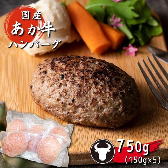 【ふるさと納税】旨味濃縮あか牛100%ハンバーグ【750g】