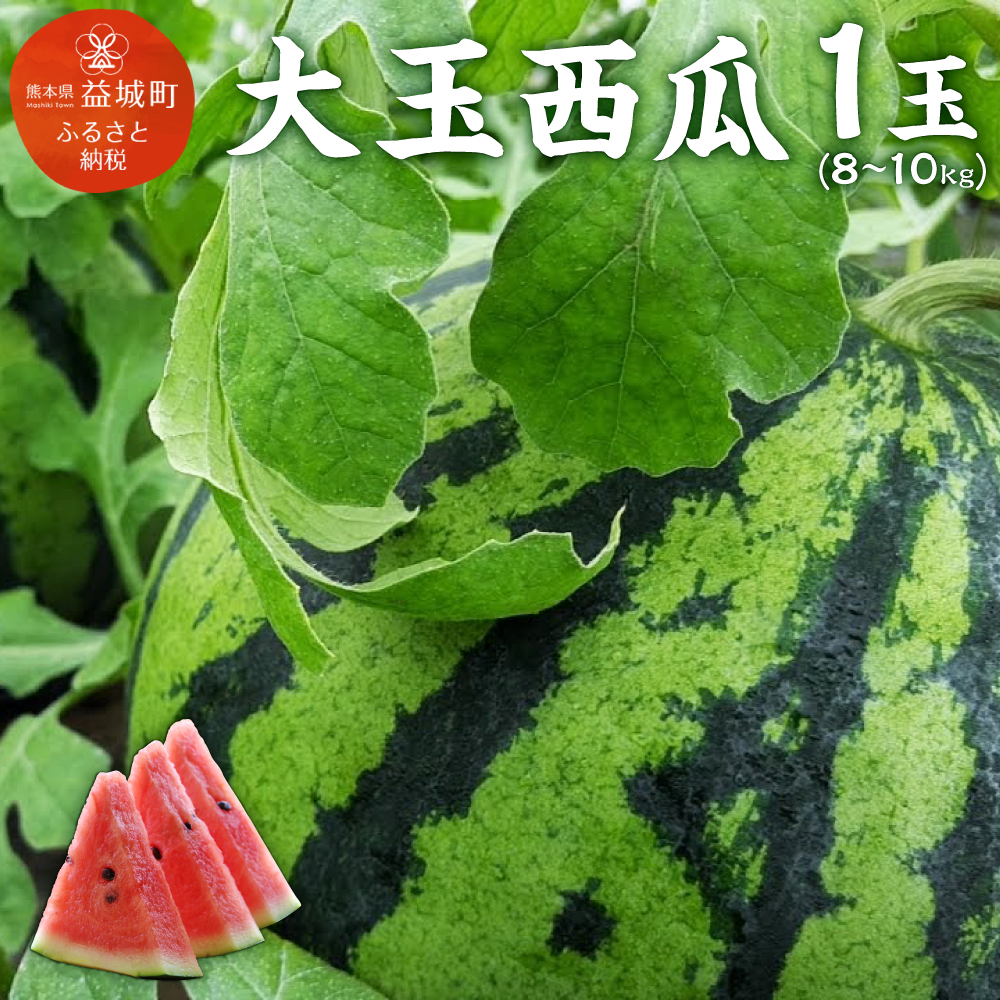 【ふるさと納税】 大玉 西瓜 1玉(8~10kg) すいか スイカ 野菜 フルーツ 果物 九州産 熊本産 送料無料