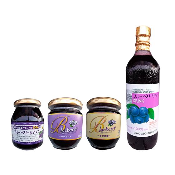 【ふるさと納税】ブルーベリージャムセット 【飲料類・炭酸飲料・ジャム・加工品・果物・詰め合わせ】