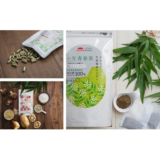 【ふるさと納税】日本山人参セット 【飲料類・お茶・加工食品・健康食品・詰め合わせ】