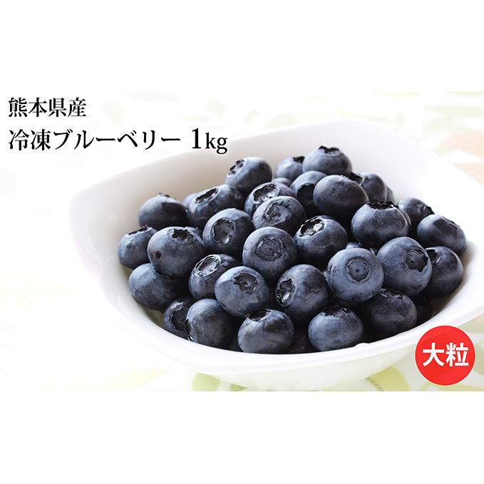 【ふるさと納税】熊本産 大粒 冷凍ブルーベリー1kg 【果物・詰合せ・セット・フルーツ】 お届け:2019年6月下旬~2020年2月下旬