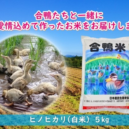 【ふるさと納税】熊本県産「合鴨米」ヒノヒカリ5kg 【お米・ヒノヒカリ】 お届け:2020年10月下旬~2021年6月下旬