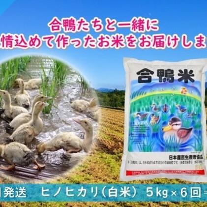 【ふるさと納税】【定期便6回】熊本県産「合鴨米」ヒノヒカリ5kg×6回 【定期便・お米・ヒノヒカリ】 お届け:2020年10月下旬~2021年6月下旬