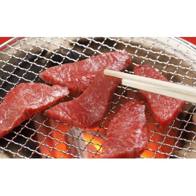 【ふるさと納税】【GI】くまもとあか牛 焼肉500g 【お肉・牛肉・焼肉・バーベキュー】