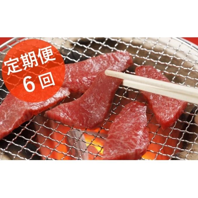 【ふるさと納税】【GI】★定期便6回★くまもとあか牛 焼肉500g 【定期便・お肉・牛肉・焼肉・バーベキュー・定期便・6回】