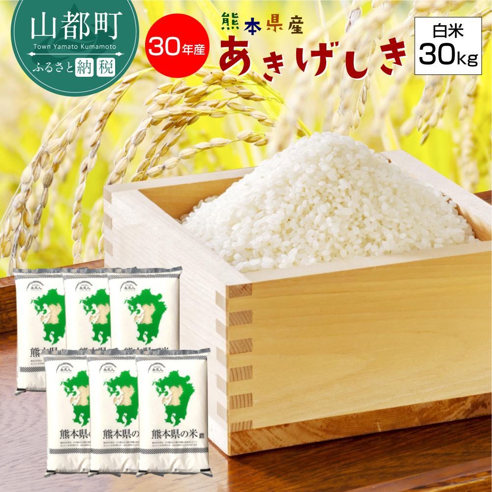 【ふるさと納税】熊本県産 あきげしき 白米30kg