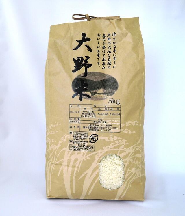 【ふるさと納税】大野米【精米】10kg ヒノヒカリ 新米 熊本県産