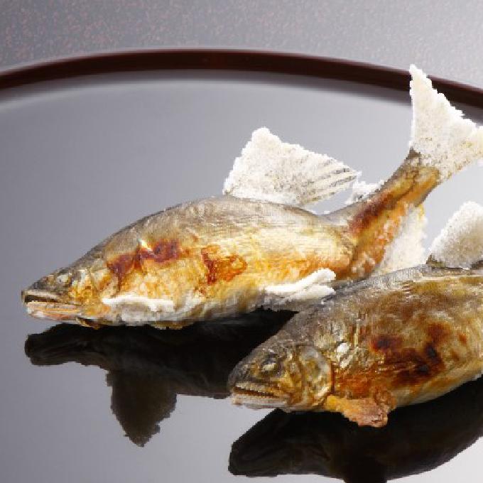【ふるさと納税】球磨川天然鮎塩焼き(炭火焼) 【魚貝類/あゆ/アユ】